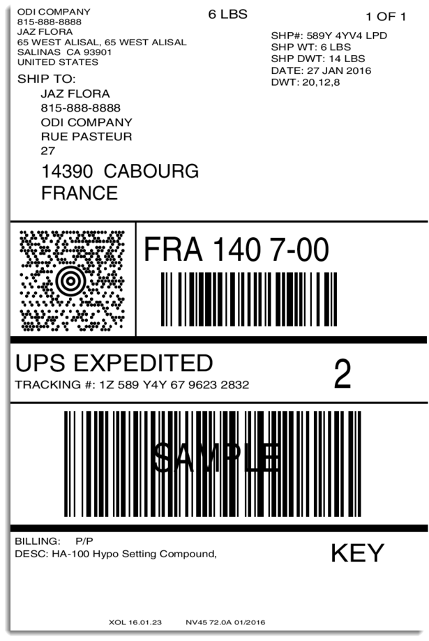 International UPS shipping label