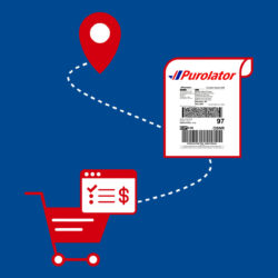 Shopify Purolator
