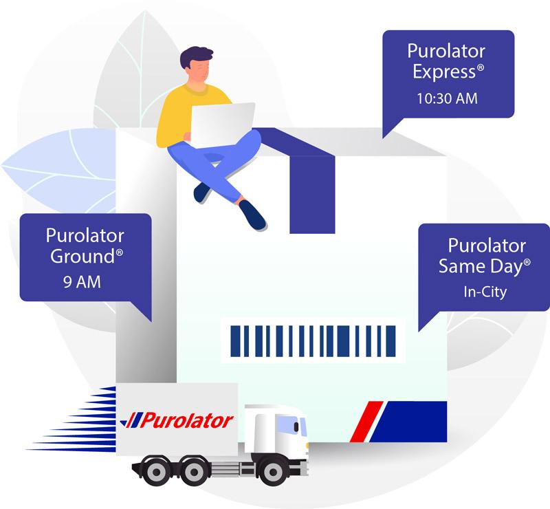 Purolator-Domestic-Delivery